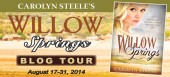 Blog tour: 'Willow Springs'