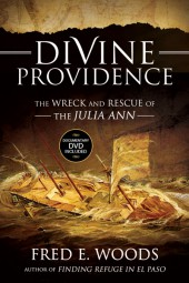 Divine-Providence_2x3