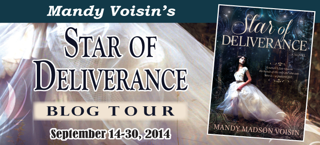 Star of Deliverance blog tour