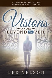 Visions-from-beyond-the-Veil_2x3