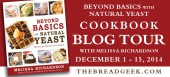 Blog tour: 'Beyond Basics with Natural Yeast'