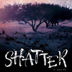Blog tour: 'Shatter'